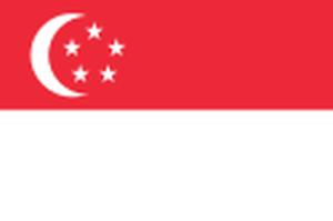 シンガポール会社登記事項証明書サンプル