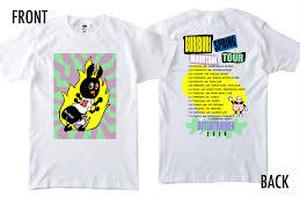 【値下げしました】ブリブリスプリングマウンテンTシャツ