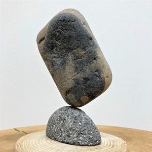 「マルタ座」 かませ石セット(皮なし)[m5-2032b]