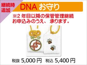 追加DNAお守り(1つ)