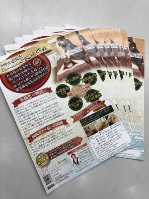 オリジナルチラシ デザイン片面+印刷1000枚 (A4.A5,B5,B6)