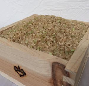 家福来米 自然栽培米 10㎏ 玄米