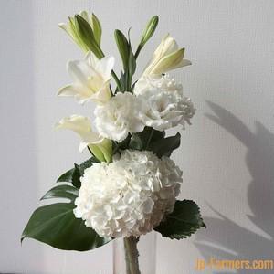 白アジサイを基調としたお供え花