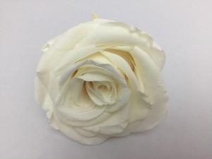 バニラホワイト(M101) 4.5~5.5cm × 4.5~5.5cm