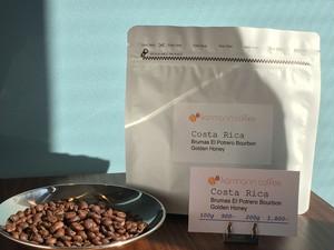 コスタリカ ブルマス エル・ポトレロ ブルボン ゴールデンハニー Costa Rica Brumas El Potrero Bourbon Golden Honey 100g