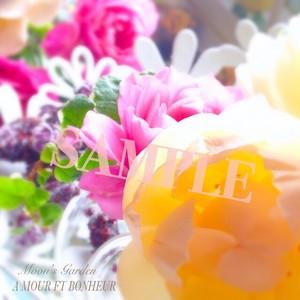 写真 薔薇『ウォラトン・オールド・ホール』