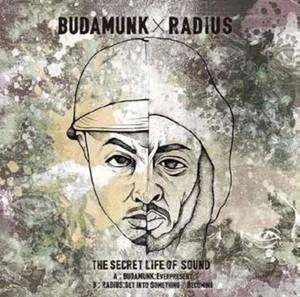 "【7""】Budamunk / Radius - The Secret Life Of Sound"