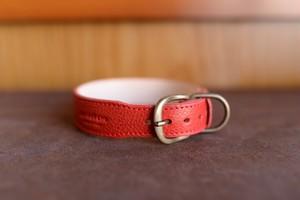 赤い革の柴犬や中型犬用の首輪 K-mr2bb