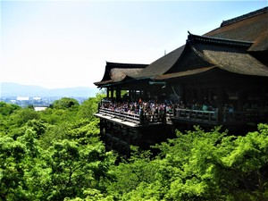 1-Day Kyoto Perfect Tour-without Lunch