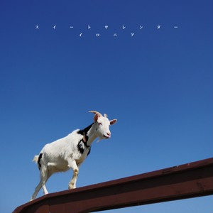 1st Single 『スイートサレンダー』
