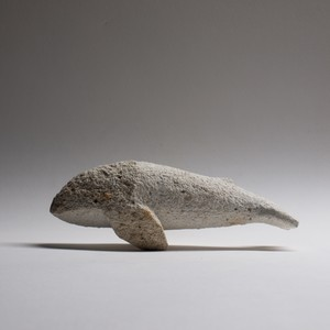 クジラ6R  Whale6R