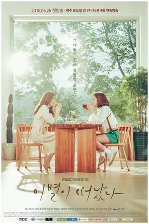 韓国ドラマ【別れが去った】DVD版 全20話