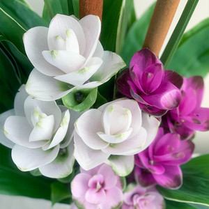 夏の贈り花 クルクマの花束 (2束1対セット)