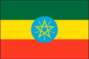 エチオピア イルガチャフィー  ペレカ G!1(ウォシュド)
