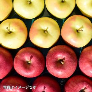 大鰐高原りんご3kg家庭用