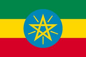 エチオピア チェレレクトG1 100g