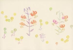 沙羅「小さな庭」 Small Gardenシリーズ(L−20)
