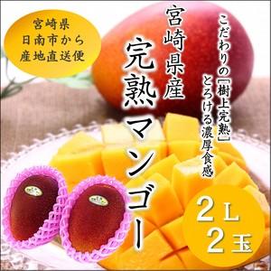 宮崎完熟マンゴー 2L×2玉 パック入