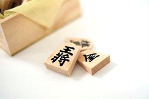 バラ売り将棋駒(天童産、国産木使用)非公開