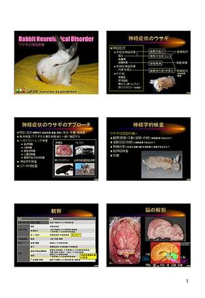 プライベートセミナー:ウサギ上級者セミナー「神経疾患」ハンドアウト