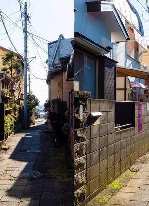切断芸術写真『PA270857』糸崎公朗