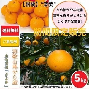 和歌山県由良町産 柑橘 清美オレンジ【ご家庭用】サイズ混合 5kg /箱【送料無料】