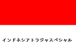 ストレート生豆【インドネシアトラジャスペシャル】100g(送料込み)