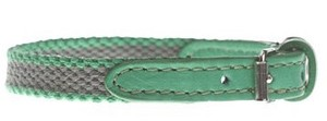 Dog collar 犬 カラー 首輪 20  Grey x green