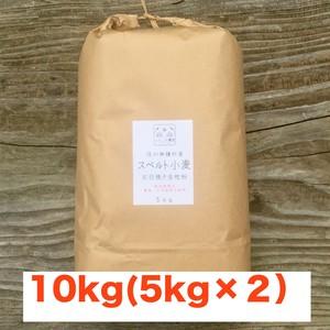 スペルト小麦石臼挽全粒粉 10kg【栽培期間中 農薬・化学肥料不使用】