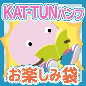 KAT-TUNパンフレット おたのしみ袋 送料込