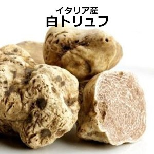 【Brava】51~60gの粒・白トリュフ