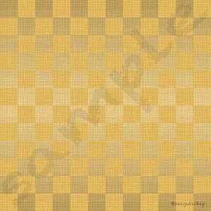 62-g 1080 x 1080 pixel (jpg)
