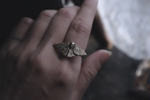 Moth ring / brass