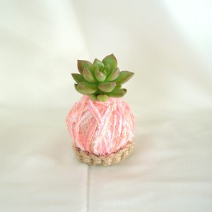 毛糸のコケ玉®