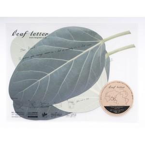 leaf letter - Ficus benghalensis