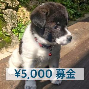 ¥5,000募金