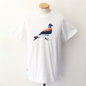 【STAPLE】 SUNSET PIGEON TEE