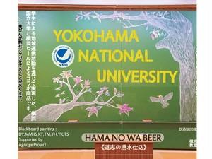 横浜国立大学ビール『ハマノワビール』 バラエティ6本セット/