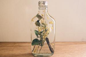 006-001 Drifted Bottle Herbarium
