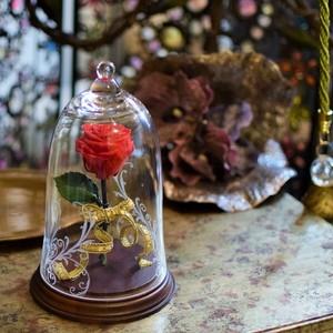 美女と野獣のような幻想的な模様付きガラス入りの赤バラのオブジェ