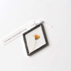 メラスフェルラ / A piece of nature 菱形 小