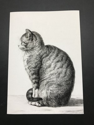 Sitting Cat by Jean Bernard レプリカ