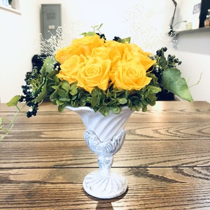 Preserved Flower Rose yellow
