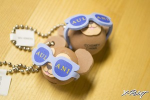HAWAII限定 AULANI Duffy Key chain