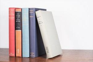 BROWN -5set- /display book