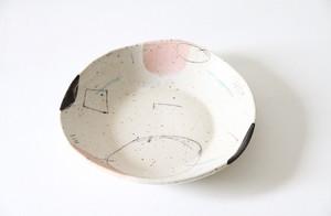 plate 001