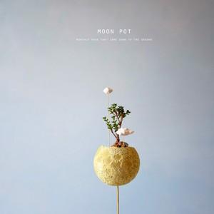 moon pot(小松波)
