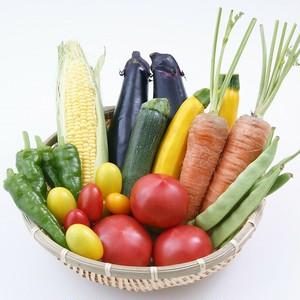 【毎月届く定期便】旬の有機野菜10品とキノコのセット 3ヶ月継続♪