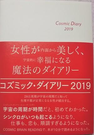 コズミック・ダイアリー2019(赤い宇宙の月の年バージョン)