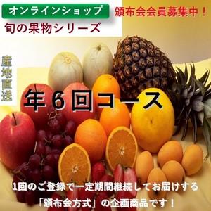 【旬のこだわりフルーツシリーズ:頒布会定期配送】年6回コース 【送料無料】